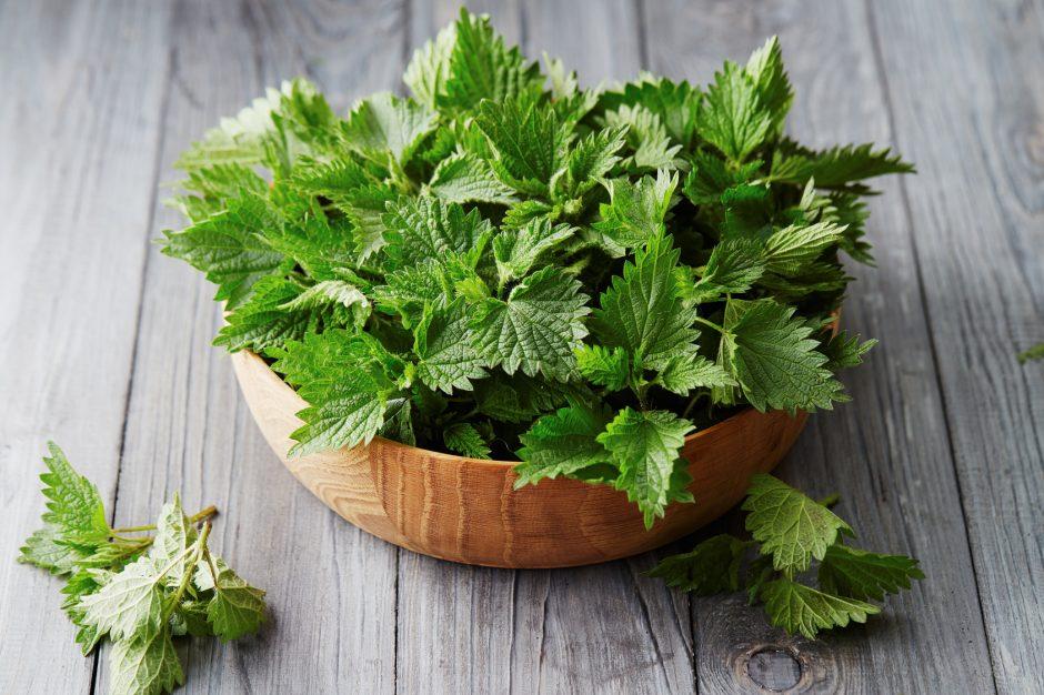 7 plantes efficaces pour maigrir de manière naturelle